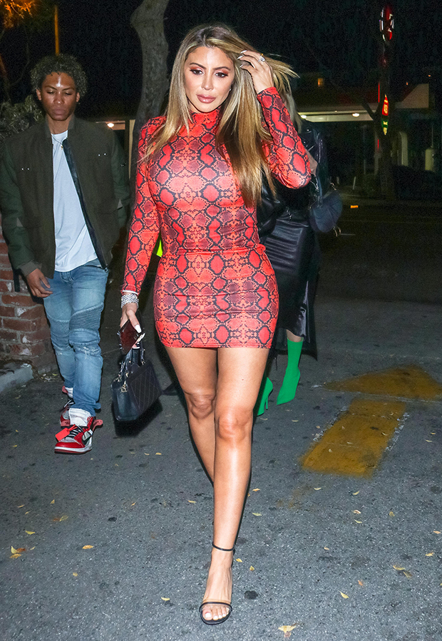 Larsa Pippen Trolled For Hypocritical Post On Instagram
