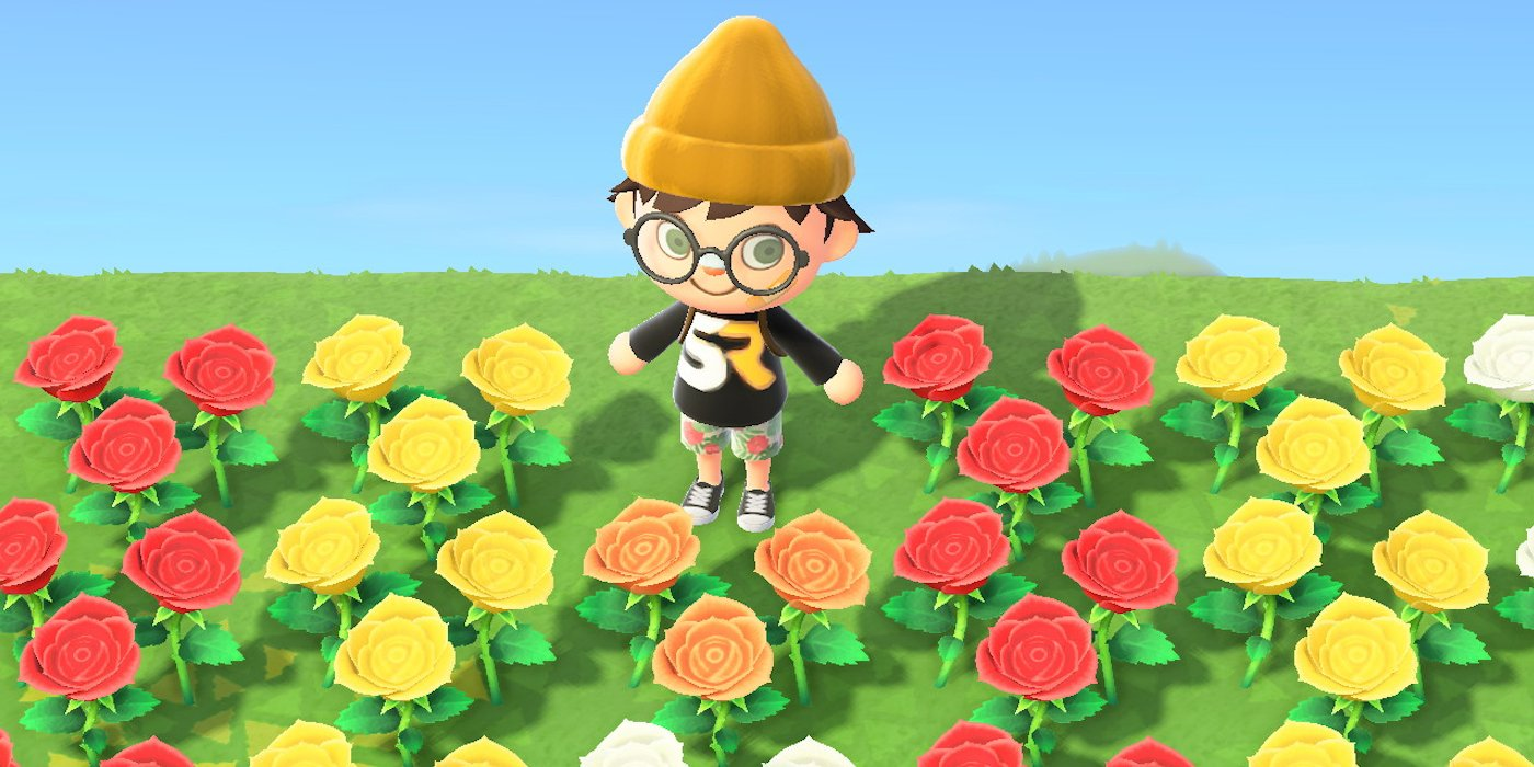 Animal Crossing New Horizons How To Grow Hybrid Flowers Binge Post