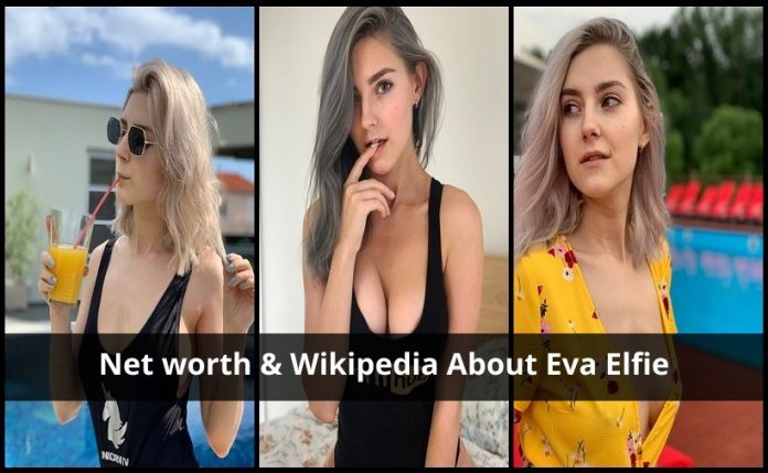Net worth & Wikipedia About Eva Elfie