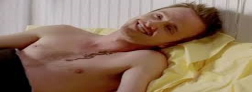 aaron paul shirtless pic 2